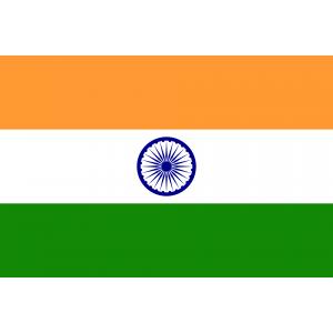 Kopi Luwak Organic, India